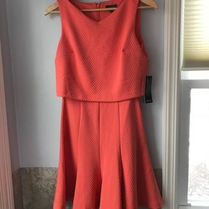 The Limited Popover Sleeveless Dress NWT